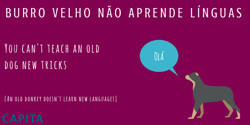 Contact Capital One >> Brazilian Independence Day & Portuguese idioms - Capita ...