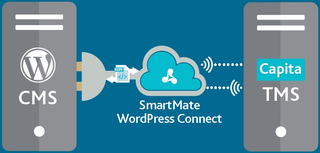 how to connect database in wordpress plugin